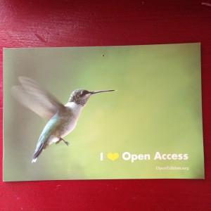Hummingbird OA